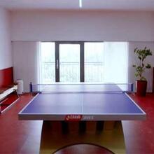 供应乒乓球运动地板,乒乓球运动地板厂家,乒乓球运动地板价格图片