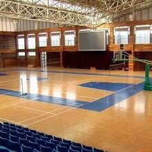 篮球馆专用地胶,篮球馆运动地胶图片