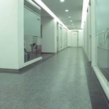 展览用地胶,学校专用塑胶地胶,医院实验室用地胶图片