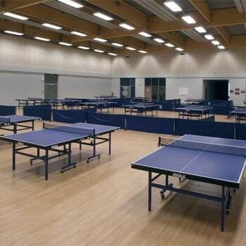 乒乓球塑胶地板厂家,同质透塑胶地板厂家