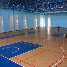 室外塑胶篮球场施东森游戏主管,专业塑胶篮球场,奥丽奇图片
