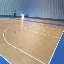 塑胶篮球场造价,塑胶篮球场,olychi奥丽奇图片
