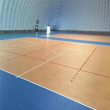 室内塑胶篮球场,塑胶篮球场的价钱,olychi奥丽奇图片