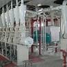 青海面粉機