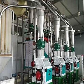 供应环保6FHK型等级粉平筛制粉小麦磨面机成套设备