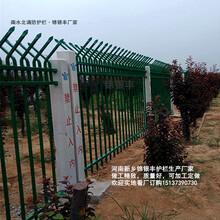 专业制造锦银丰工地护栏网优质服务工地隔离网图片