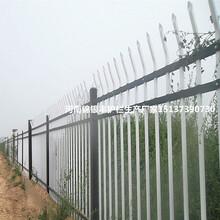 福建销售工地护栏网价格临边防护栏杆销售图片