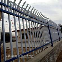 安徽工地护栏网工程建筑防护栏图片