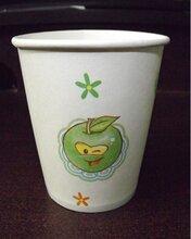 江西景德镇房地产一次性纸杯广告纸杯厂家直销易优纸杯