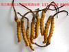 禅城回收冬虫夏草-上门回收虫草