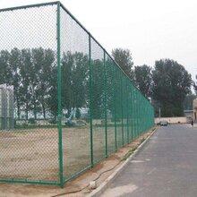 蚌埠浸塑运动场围栏网蚌埠操场护栏网每平米多少钱