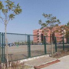 滁州学校体育场护栏网生产厂家