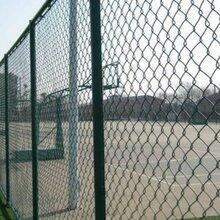 体育场护栏网球场围栏网体育场围栏网宣城体育场护栏体育围网