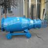 滑輪式潛水軸流泵廠家