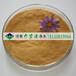 供应武汉高色度污水处理用聚合硫酸铁21%聚合硫酸铁价格