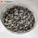 莆田海绵铁去除水中溶解氧国标2-4mm海绵铁滤料销售价格