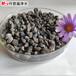 滁州環保型水處理海綿鐵濾料除氧海綿鐵批發價格