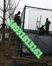 塑胶跑道标准围网足球网围网/隔离网/体育围规格齐全保质保量图片