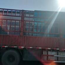 塘沽干式打磨柜供应图片