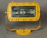 GF101防爆泛光灯系列GF101-J400远光照明防爆泛光灯同款楚欣亨光电批发