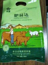 河北保定喂牛吃什么饲料长得快牛吃什么长得快牛羊催肥增重王谊鑫肥易达