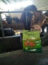 牛吃什么长得快牛羊催肥用什么好牛羊催肥添加剂哪家好谊鑫肥易达