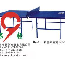 广西柳州厂家提供室内外乒乓球桌、彩虹型乒乓球台、折叠式乒乓球台
