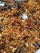 厚街三極管回收,回收三極管價格行情