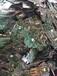 麻涌回收覆銅板正規誠信廠家