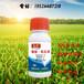 内蒙玉米除草剂厂家安全型玉米除草剂玉米田除草剂价格