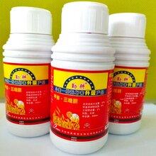开封普朗克小麦拌种剂厂家拌郎拌娘小麦拌种剂成分和效果
