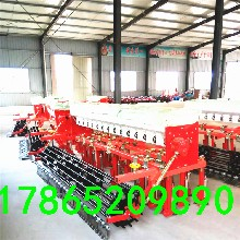 台州效果好小麦播种机小麦起垄播种机厂家地址