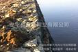 铝锌合金钢丝石笼网_PVC包塑石笼网厂家_金照现货供应