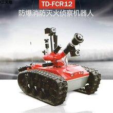 防爆消防滅火機器人圖片