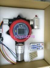 DR70C-CO在线式一氧化碳检测仪带报警灯图片