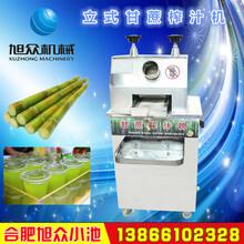 立式甘蔗榨汁机电动甘蔗榨汁机安徽甘蔗榨汁机厂家直销图片