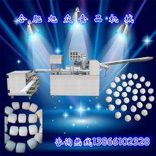 全自动包子机ZH-270包子馒头组合机多功能包子机一机多用图片