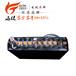 廣東廠家直銷電瓶車電池觀光車電池諾力叉車蓄電池24V210AH電池