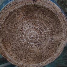 明代瓷器上海做权威需要多少钱