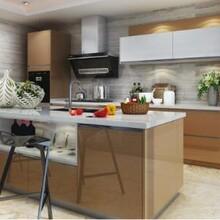 欧意厨柜金色年华晶悦系列高分子品牌整体厨柜厨房厨柜图片