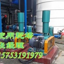 徐州锅炉反料风机,锅炉返料风机厂家:华东锅炉反料风机供应