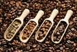 山东青岛咖啡进口报关详情