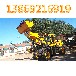 遼寧本溪大型裝載機大型鏟車玉柴發動機價格cy