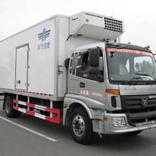 上海至濱州冷藏運輸貨車車源廣闊價格實惠圖片