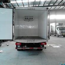 上海至福州冷藏物流運輸準時到達圖片