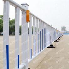 市政园林护栏网/市政隔离栏/市政隔离栅