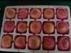 烟台红富士水果礼品装价格