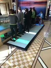 四川展览设备机械大象出租项目道具冰雕展出租地板钢琴出租