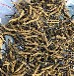 無錫回收冬蟲夏草-無錫回收蟲草-惠山回收蟲草洋酒