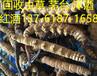 湘潭回收虫草-湘潭回收虫草价格岳塘回收虫草